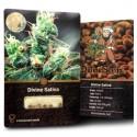 Divine Sativa