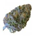 CBD Blue Cream